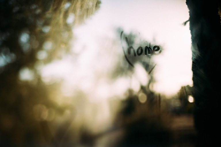 freelensed, free 52 project, toxic mold, arizona